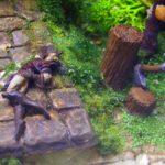 Diorama - død alv